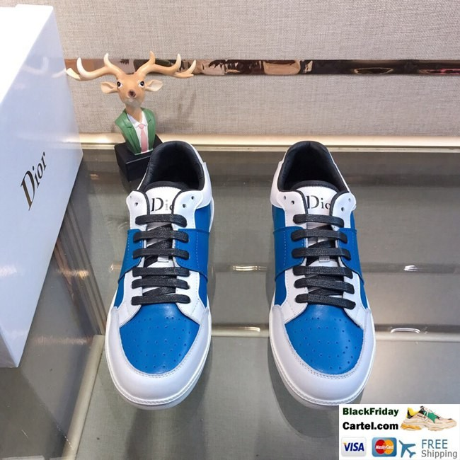 High Quality Dior 2019 New Explosion Blue Casual Men's Shoes